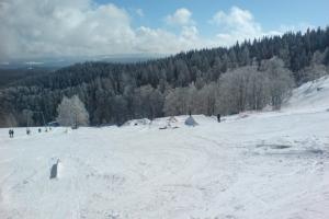 bester-park-im-schwarzwald